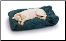 Super Soft Max Rectangular Dog Bed