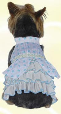 Blue polka dots dog dress