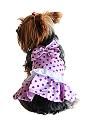 Satin polka dot dog dress