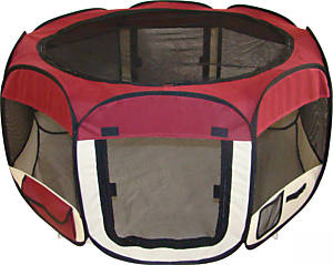 Fenced pet dog play yard - maroon