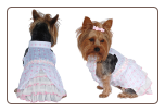 Designer Dog Dress w/Polka Dots