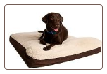Great Paw Designer Serenity Memory Foam Dog Bed