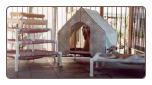 Dog Bed Lounges/Tent