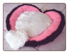 Heart-shaped Designer Dog / Cat Bed