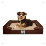 Great Paw Designer Orthopedic Dog Bed