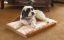 Cedar Pet Dog Bed