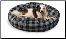 Round Bagel Dog Bed w/Reversible Pillow