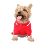 Front view red polo dog t-shirt