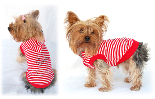 Designer small dog clothes hoodie