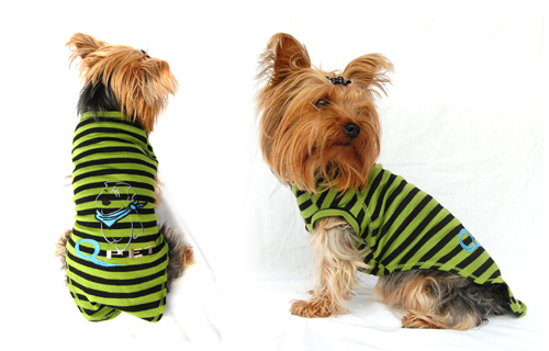 Designer dog t-shirt w/QPet logo - green w/black