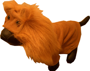 Lion King dress costume for dog/pet