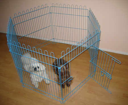 Dog exercise pen - blue